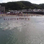 Swimming Shonan
